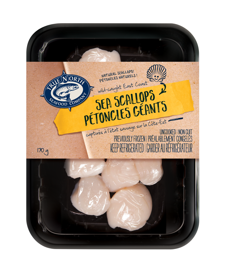 SEA SCALLOPS Image