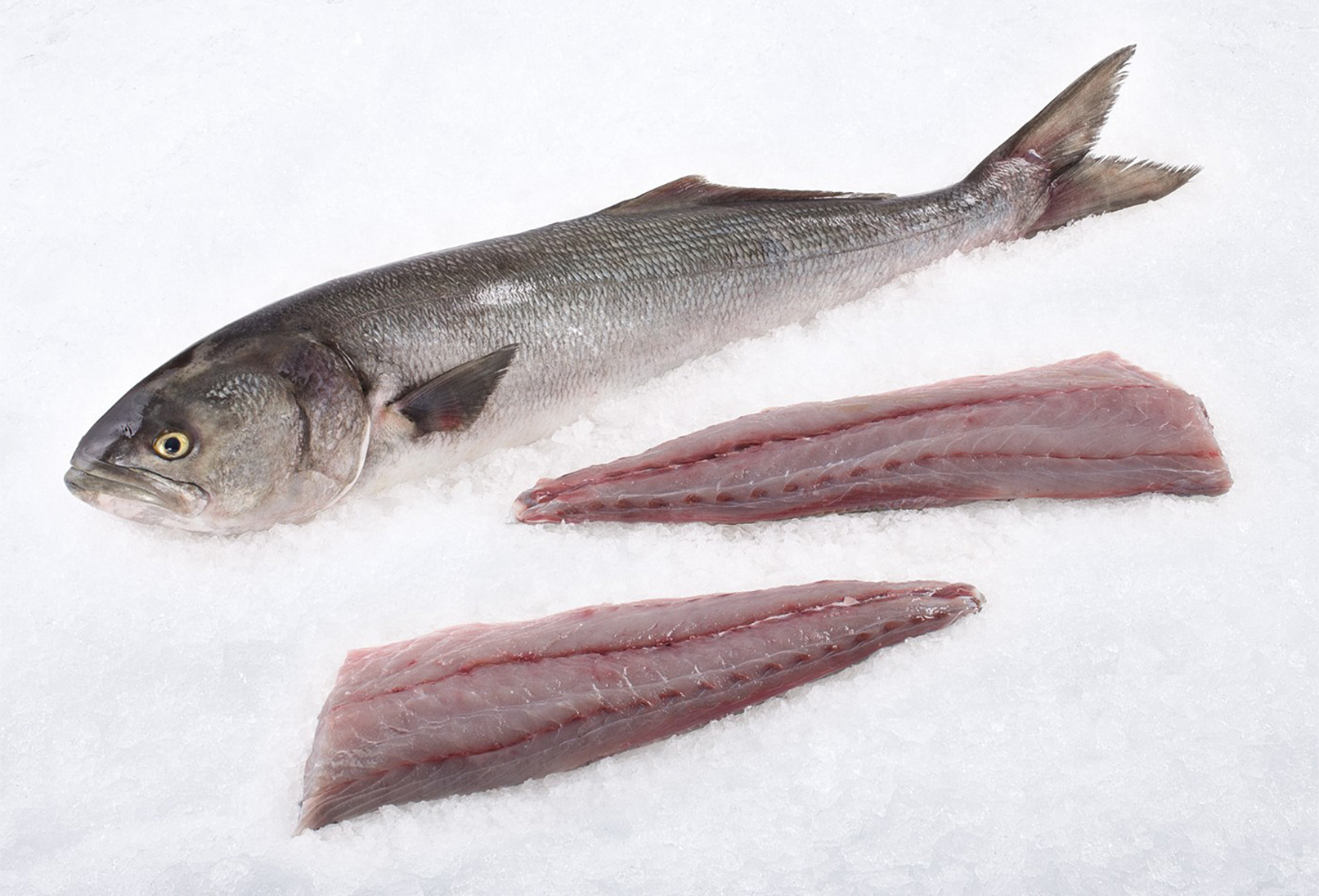 BLUEFISH FILLETS Image