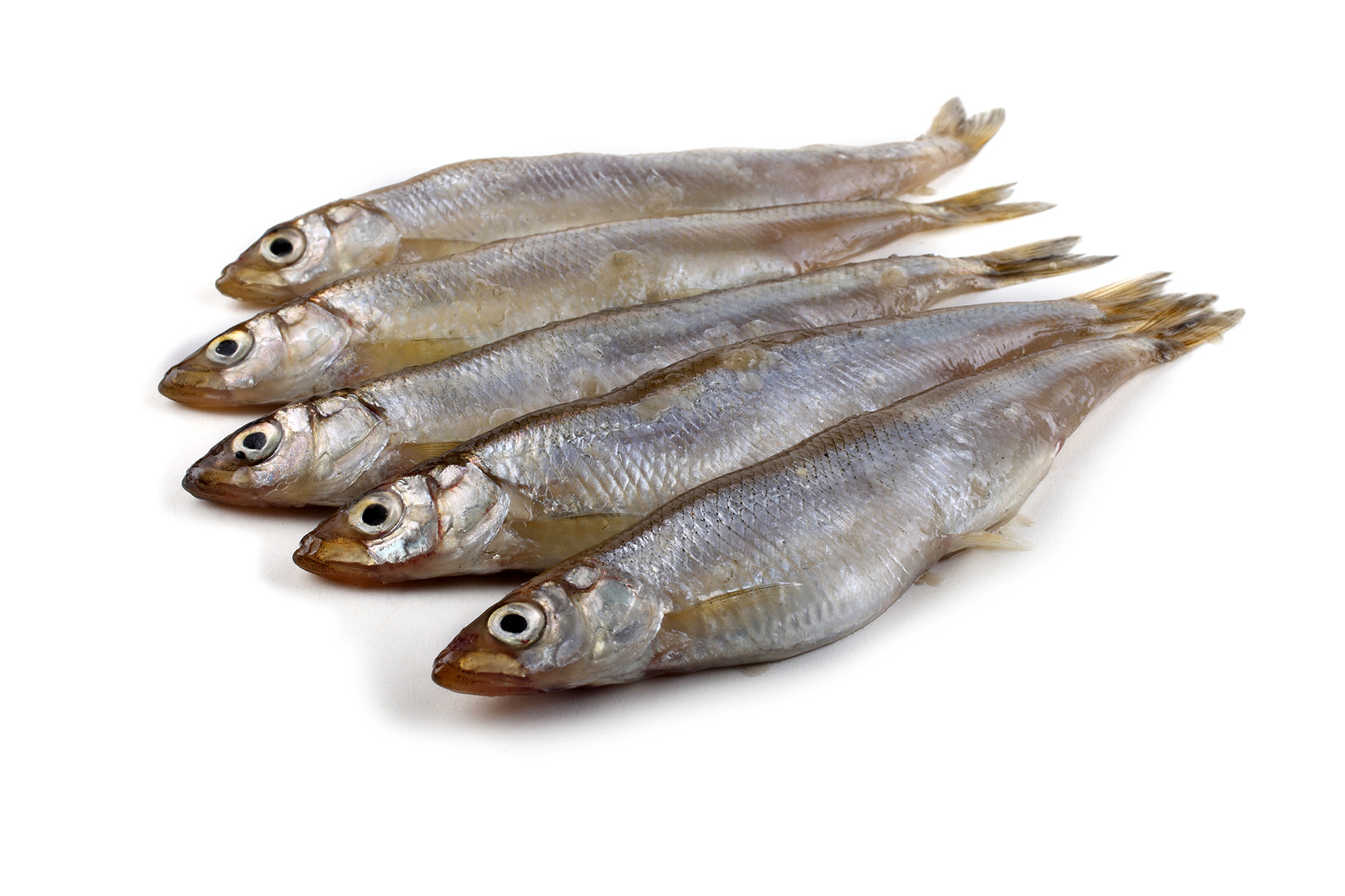 WHOLE SMELTS Image